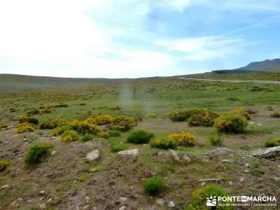 Cerro Perdiguera-Sierra Morcuera-Canencia; rutas senderismo cerca de madrid ruta por la pedriza